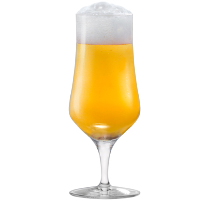 8609 MasterBrew Pilsner Beer Glass
