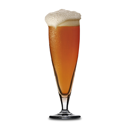 Masterbrew Classic Beer Glass Filled With Beer